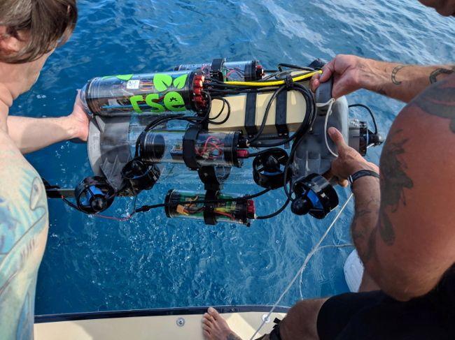 Робот-пылесос нового поколения для отлова рыб-крылаток