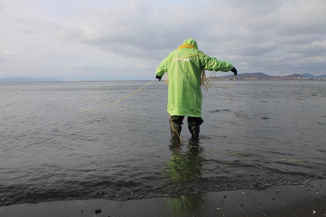 Подводный дрон Гринписа изучил дно Авачинской бухты на Камчатке